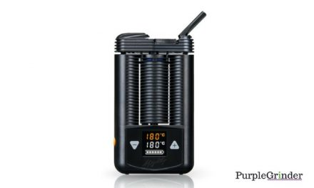 Mighty Vaporizer Review: Its The Best For These Reasons